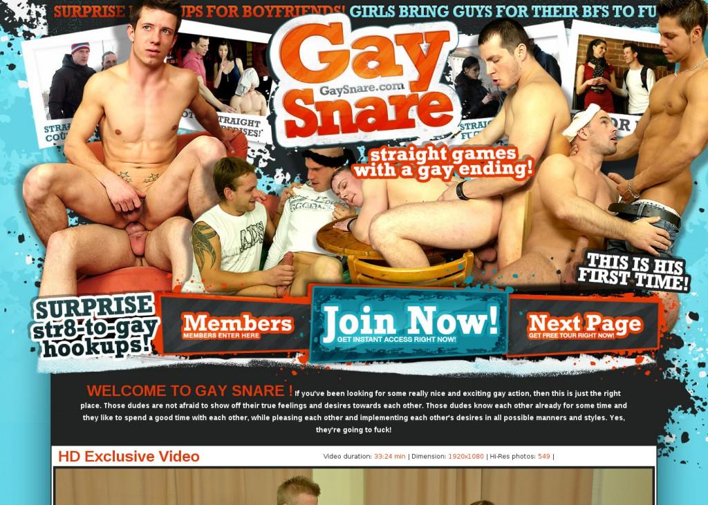 gaysnare.com