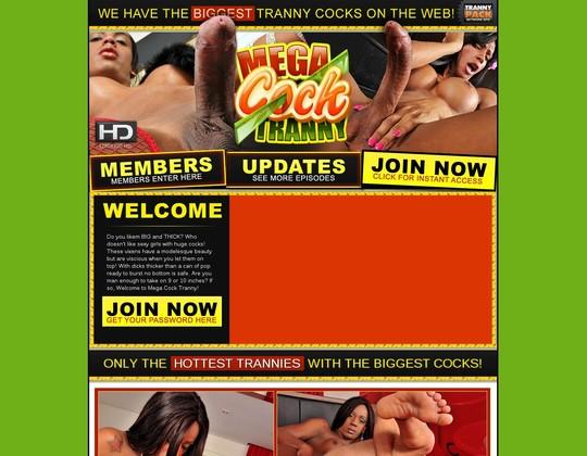 in.megacocktranny.com