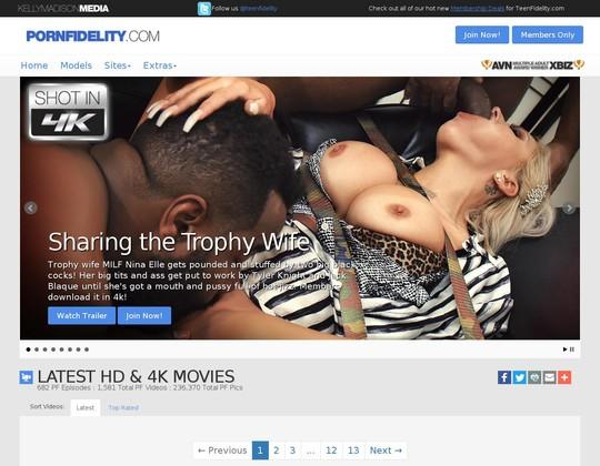 Pornfidelity