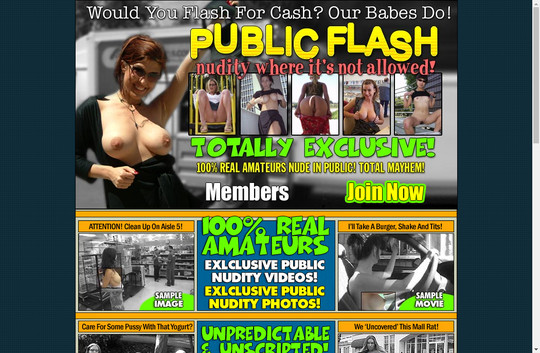 Public Flash Tour