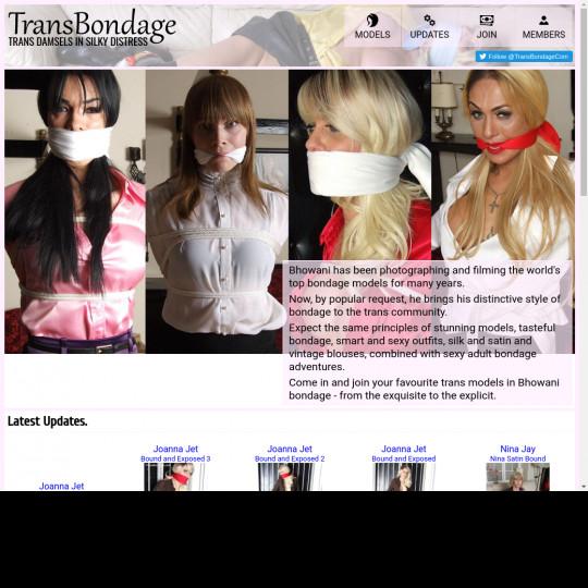 trans bondage